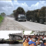 Profit Over People: Crisis in Belize's Sugar Cane Industry